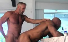 Gay muscled bear spunk