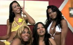 Ebony trannies enjoy a steamy foursome in colourful bikinis