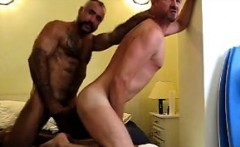 Sexy daddy bears fucking
