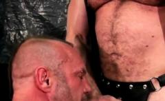 Gay bears ass fucked raw