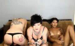 Three sexy amateur shemales having some group sex
